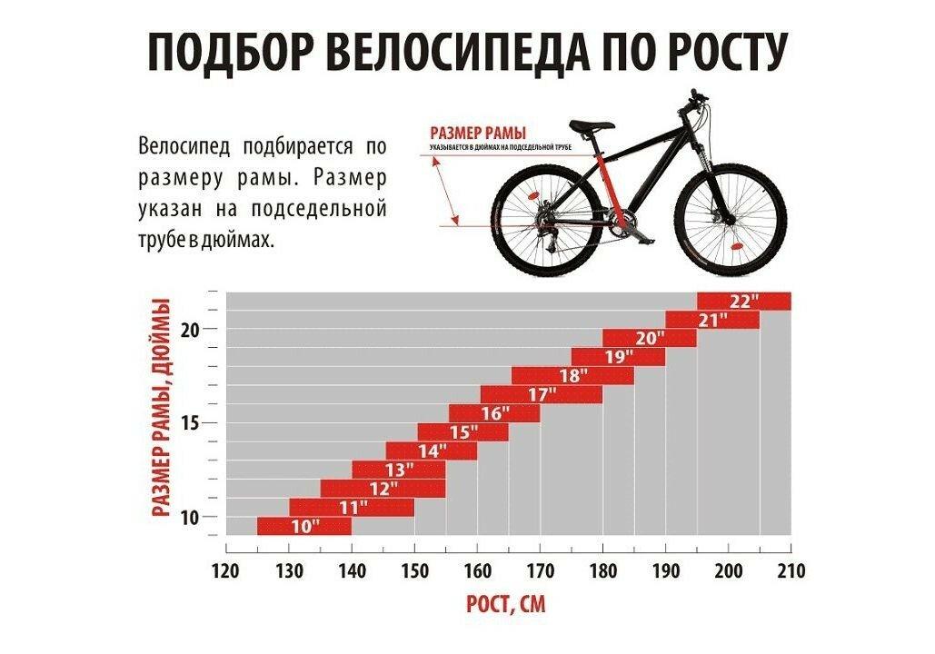 Подбор рамы велосипеда в зависимости от роста