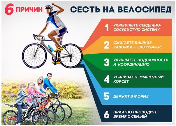 Нужно ли обслуживание современному велосипеду