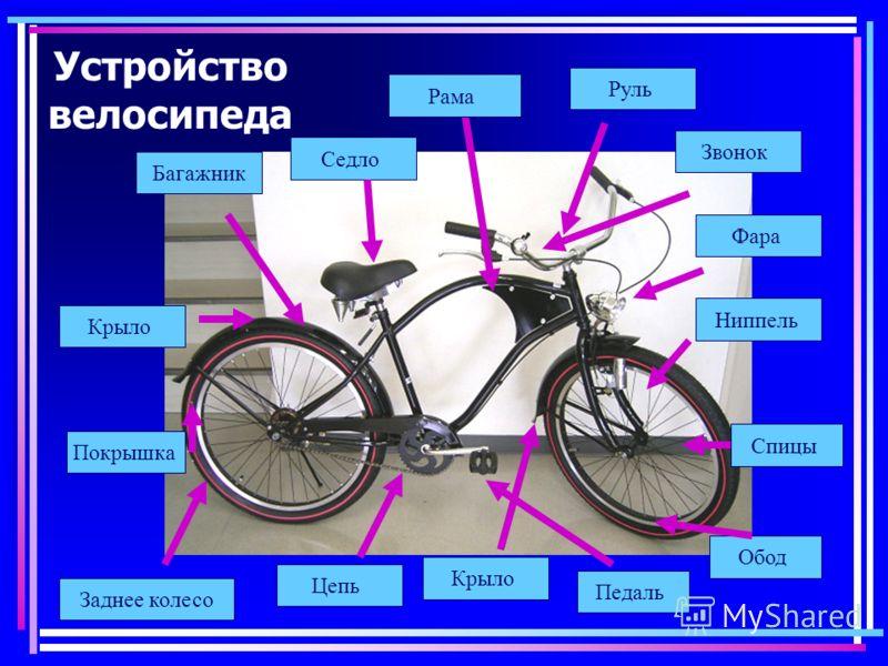 Как выбрать велосипед для женщины: особенности конструкции и комплектации