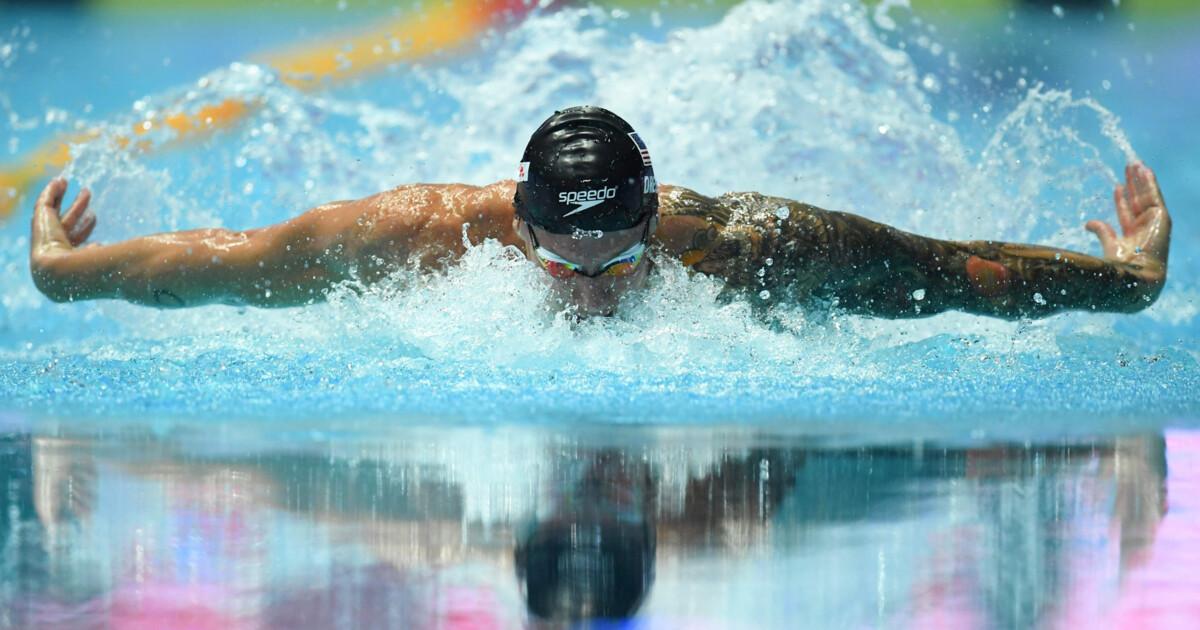 Всегда ссиним платочком. печальная традиция лучшего пловца мира | спорт.tut.by | спорт.tut.by