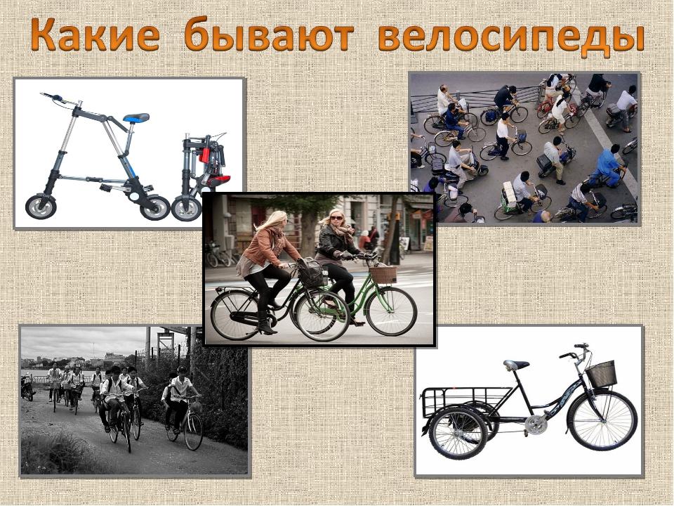 Виды велосипедов и их назначение: разновидности, классификация