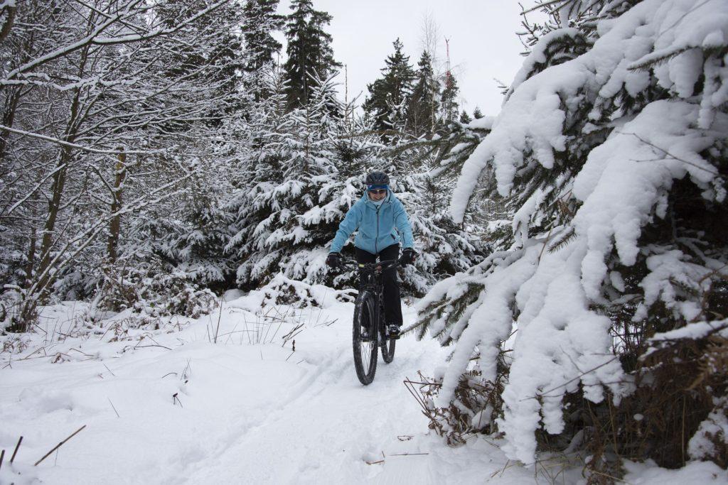 Какой велосипед выбрать для города: рекомендации по выбору велосипеда для начинающих