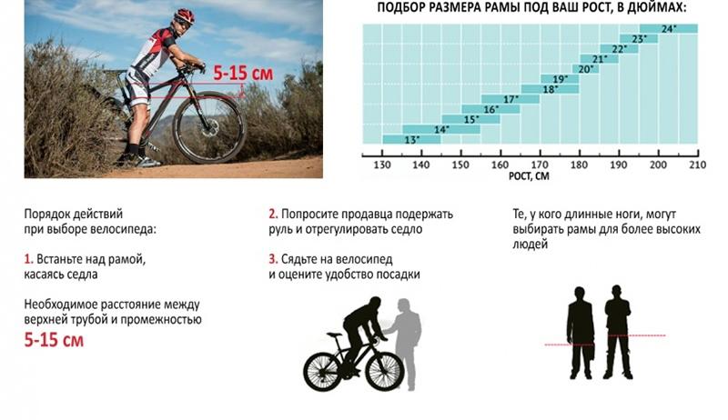 Как узнать размер рамы велосипеда? как измерять длину рамы в дюймах рулеткой? как сделать расчет высоты рамы в см? почему важно знать размер рамы?