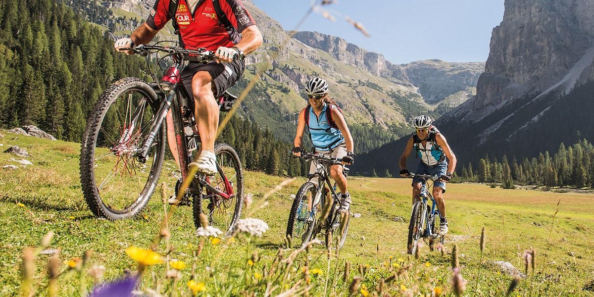 Горные велосипеды от а до я - всё о велоспорте