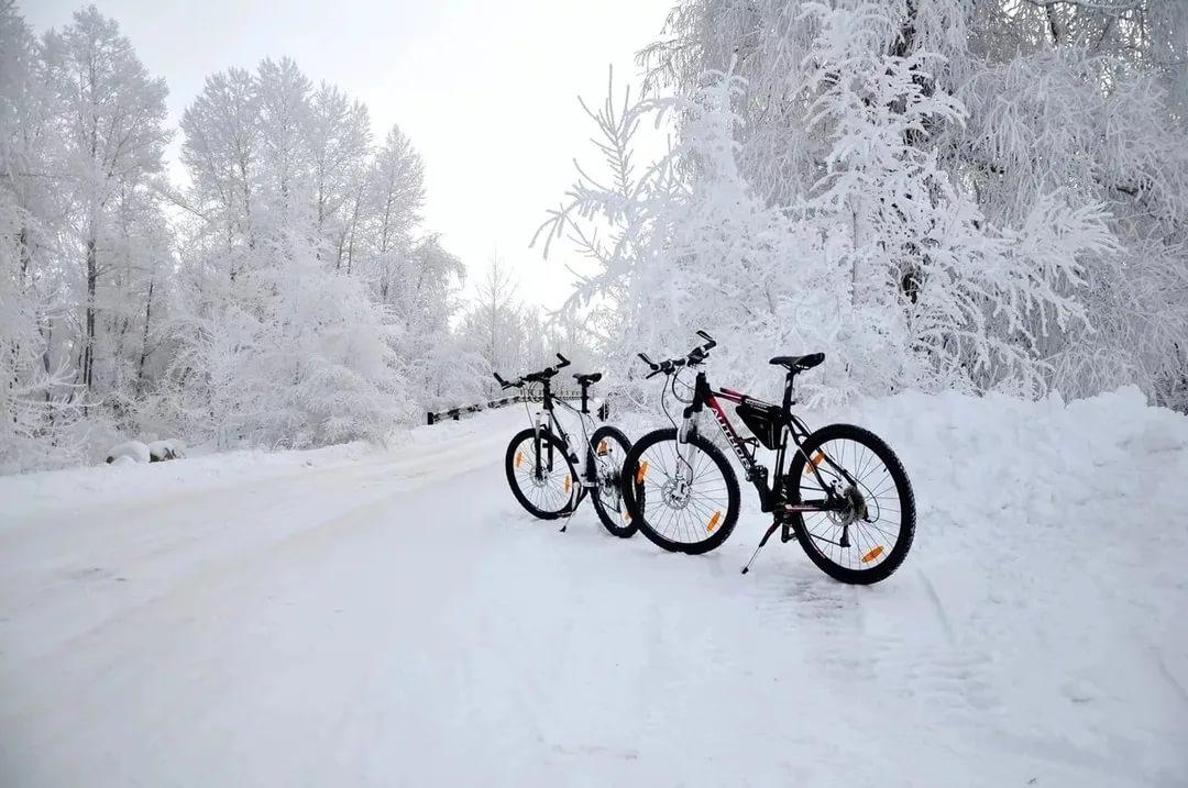 Стоит ли кататься на велосипеде зимой: плюсы и минусы