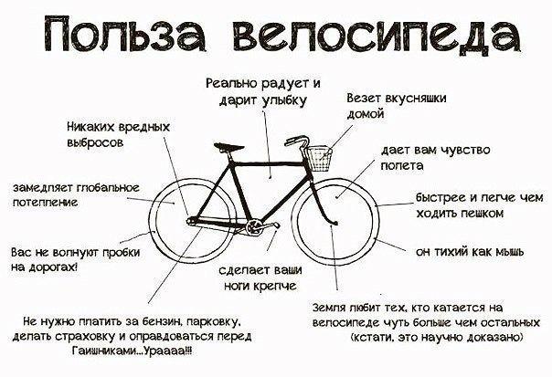 Нужны ли права на велосипед в 2020 году