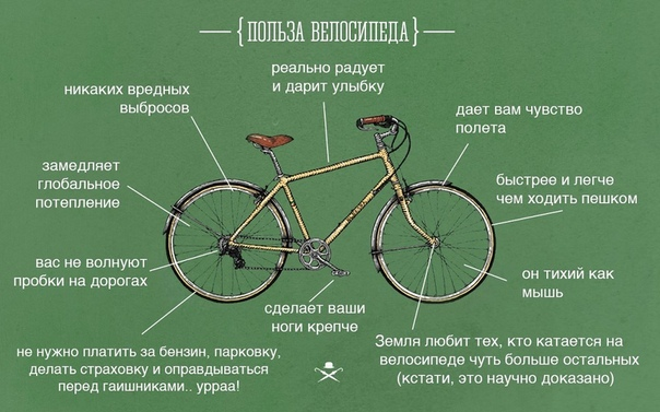 Езда на велосипеде: польза и вред для женщин, как ездить правильно