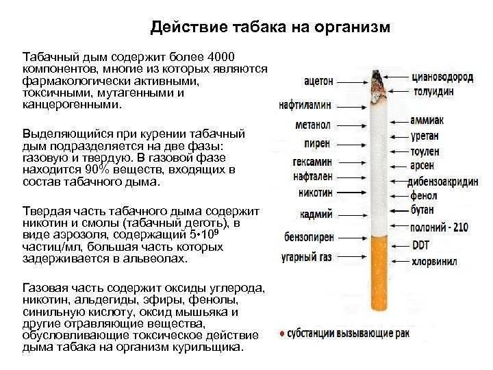 Курение и варикоз: особенности влияния