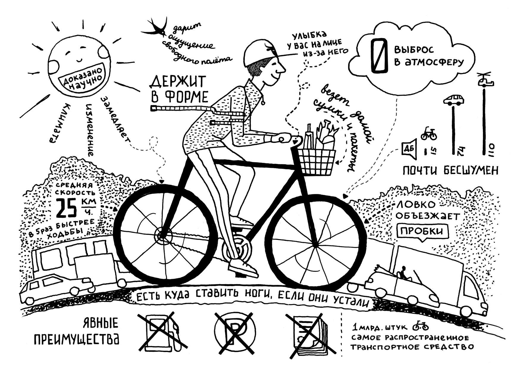 10 лучших велосипедов bmx