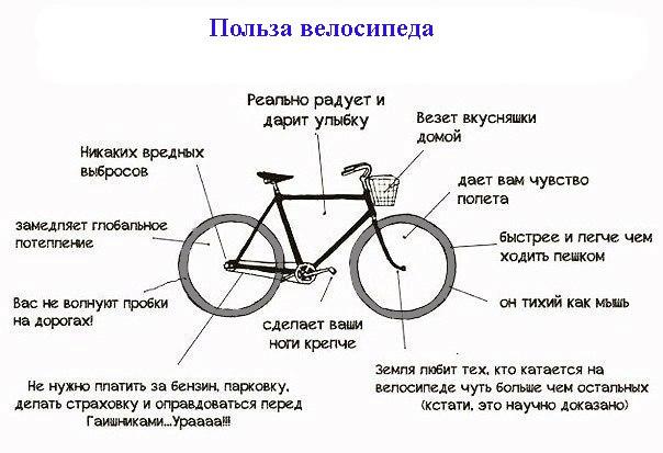 Чем полезна езда на велосипеде для женщин, фото / польза при проблемах с похудением