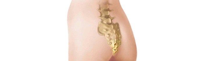 Болит спина и копчик: причины, профилактика