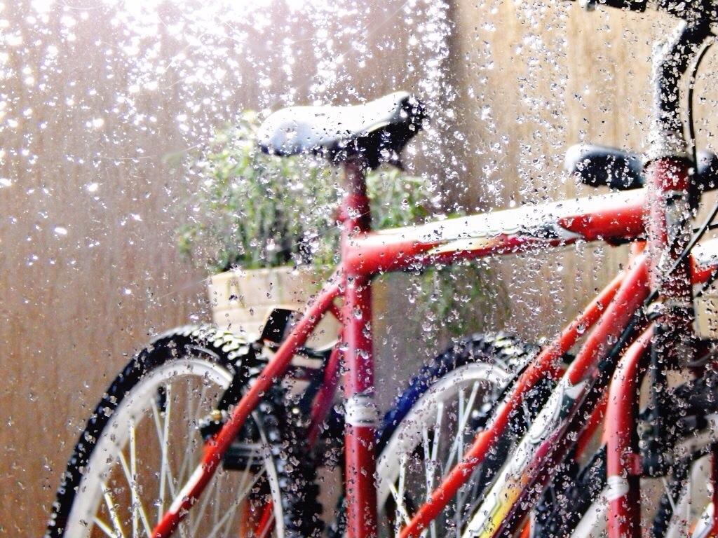 Самый лучший способ согреть замерзшее лицо велосипедиста
