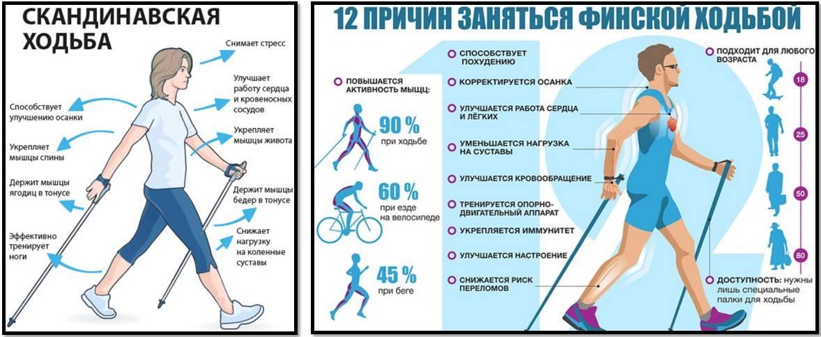 Что произойдет с вашим телом, если ходить 1 час в день? :: polismed.com