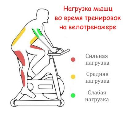 Упражнение велосипед лежа на спине: польза, как делать, отзывы