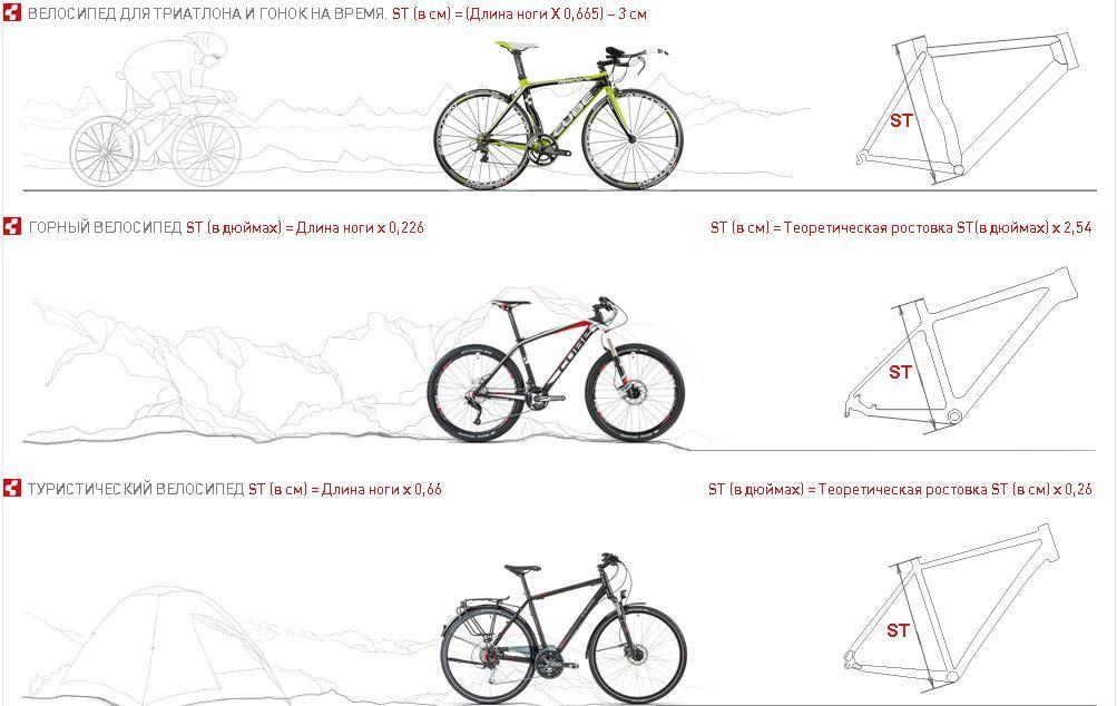 Выбираем размер рамы велосипеда по росту: таблица и общие рекомендации