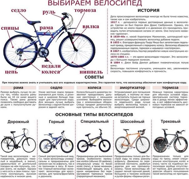 Как подобрать размер рамы велосипеда по росту?