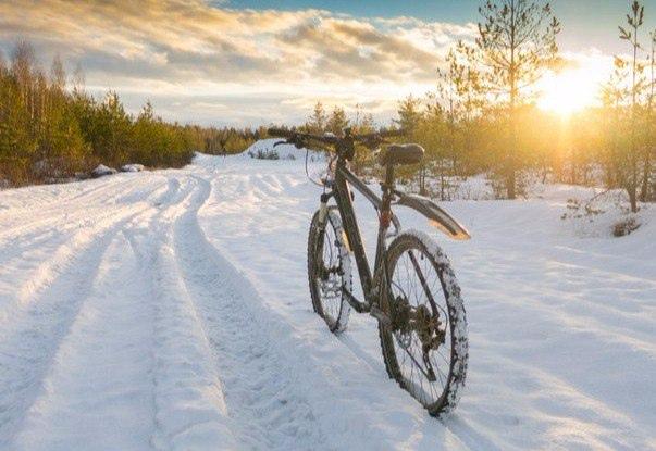 Какой велосипед выбрать для города