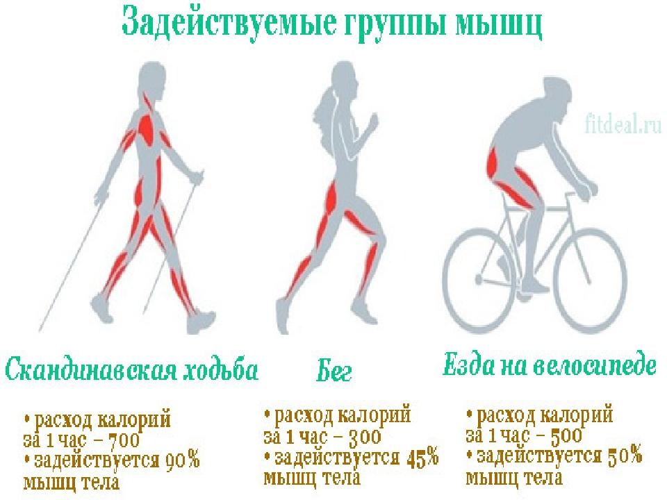 Проходим 10 000 шагов в день. простая и эффективная тренировка