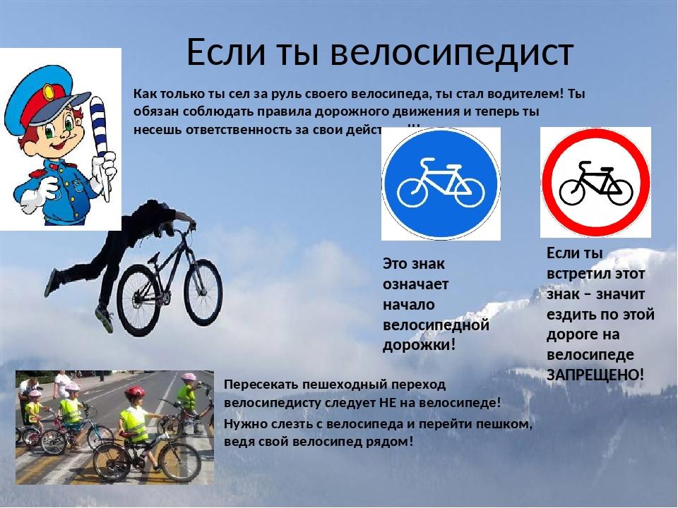 Дтп с наездом на велосипедиста в вопросах 2021