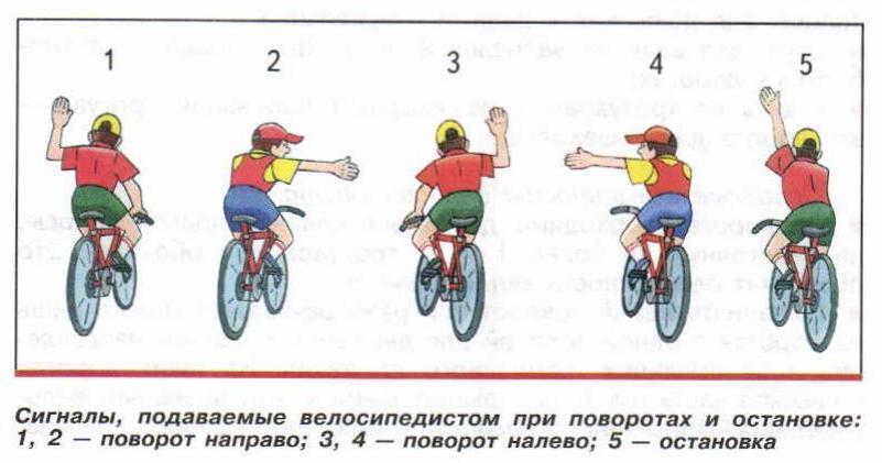 Пдд для велосипедистов в россии   блог об отдыхе в черногории, таиланде, вьетнаме, малайзии и др. странах