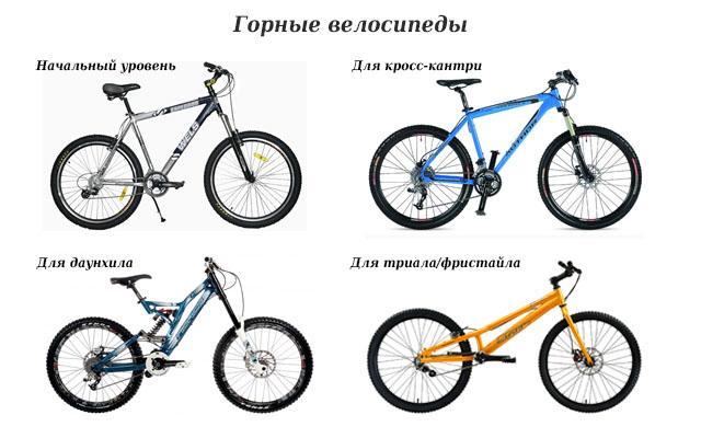 Разница между горным и дорожным велосипедом
