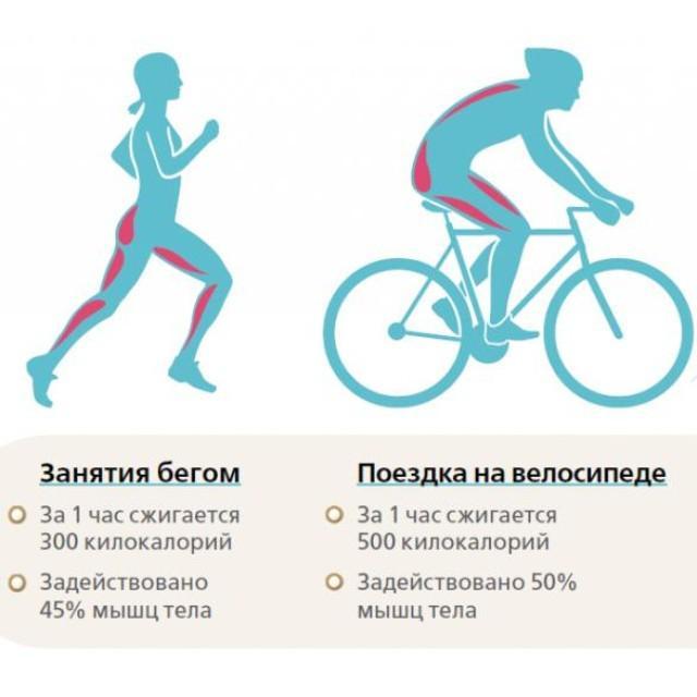 О сжигаемых калориях при езде на велосипеде: сколько можно потратить ккал