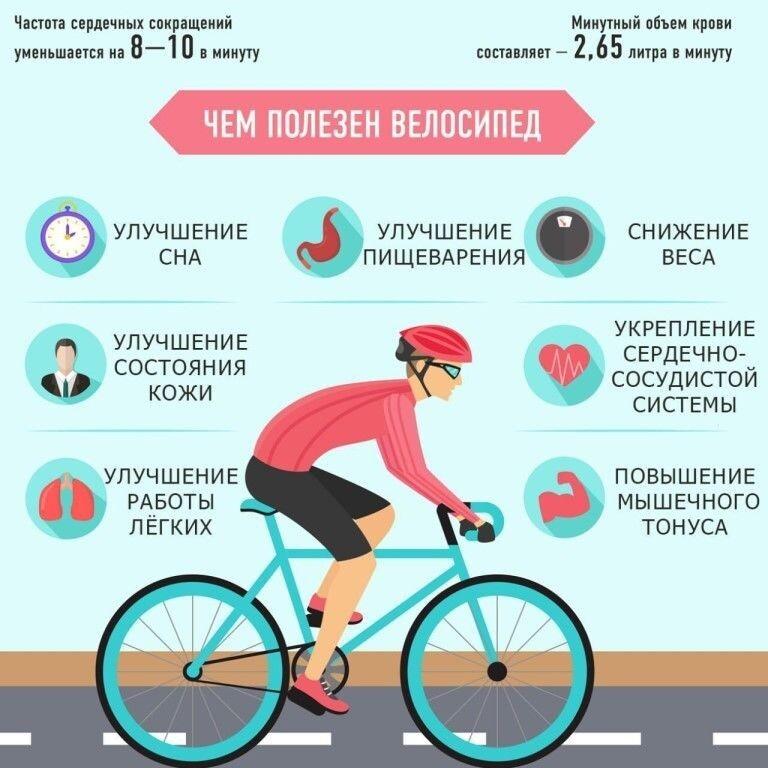 Катание на велосипеде — польза и вред | польза и вред