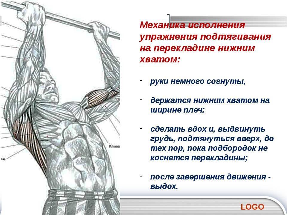 Подтягивания параллельным хватом – плюсы и минусы, какие мышцы работают