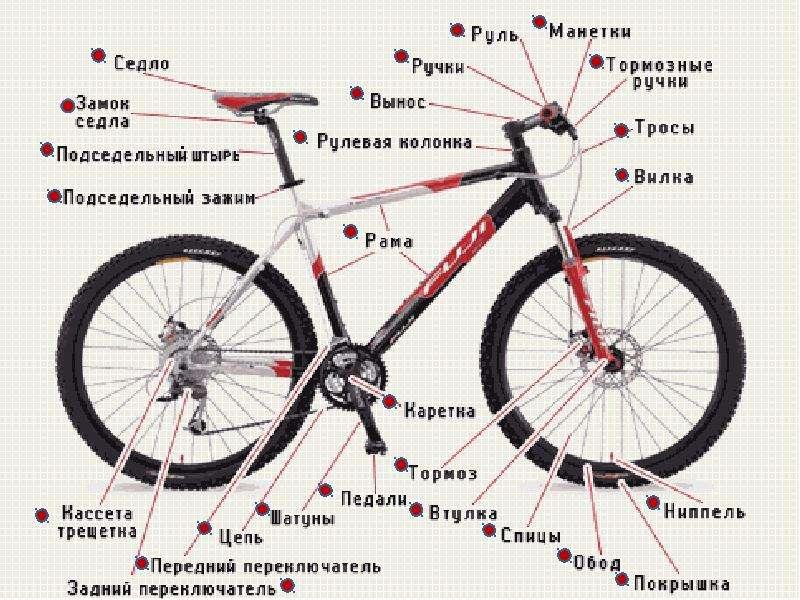 Велосипедный звонок, выбираем клаксон на велосипед