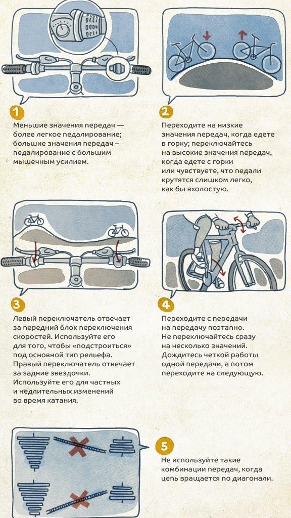 На заднем, не спеша: как научиться ездить без рук на велосипеде