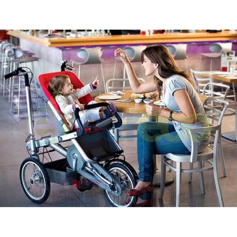 Трициклы для взрослых: виды и особенности выбора