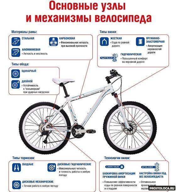 Как подобрать велосипед по росту и весу: таблица для подбора размера