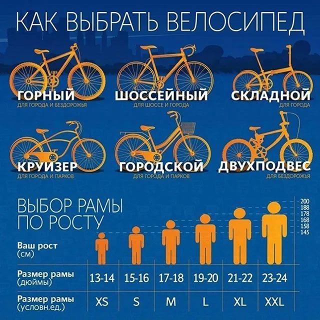 Как выбрать женский велосипед. обзор моделей, рекомендации экспертов