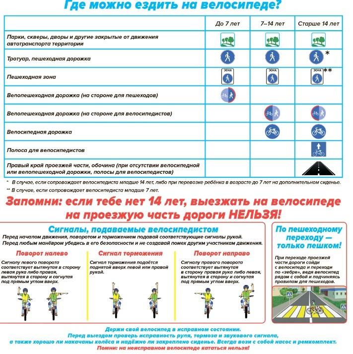 Гибдд против велосипедистов: 10 правил безопасной езды без штрафов
