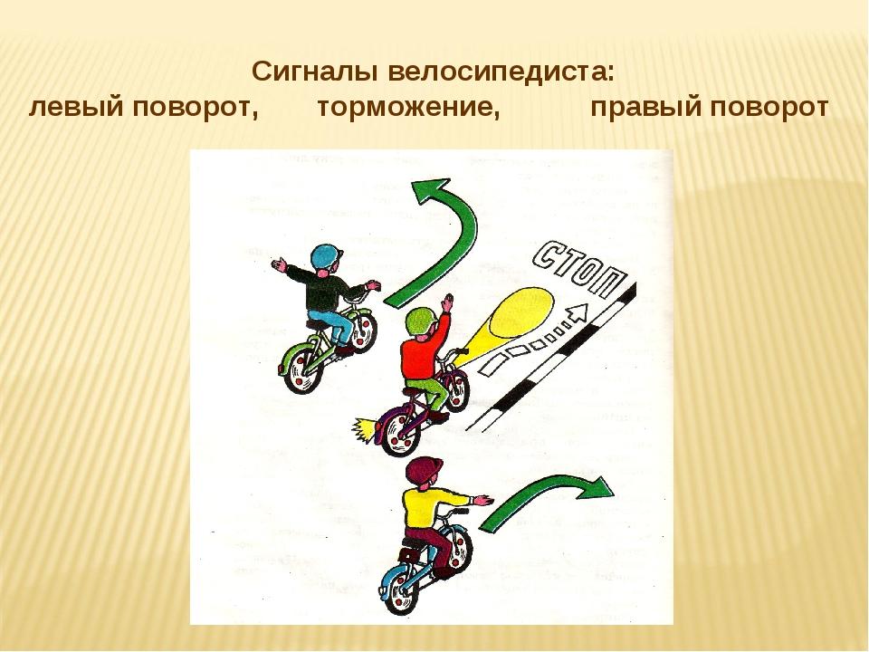 Пдд для велосипедистов – указания, запреты, безопасность!