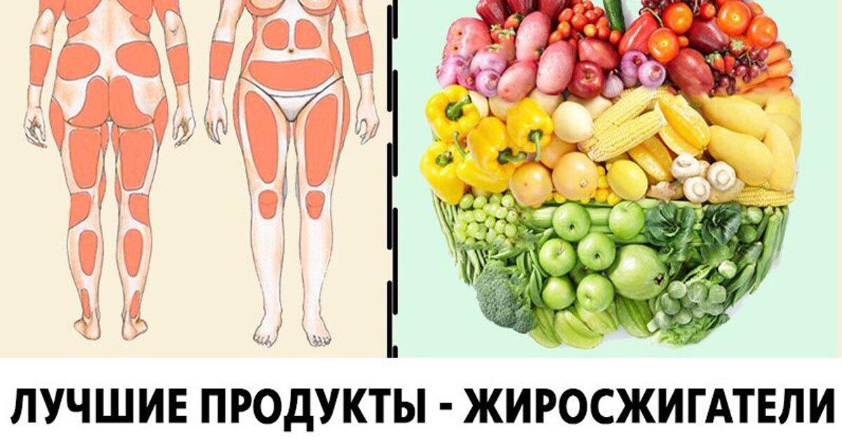 Топ-10 продуктов, ускоряющих метаболизм в организме | food and health