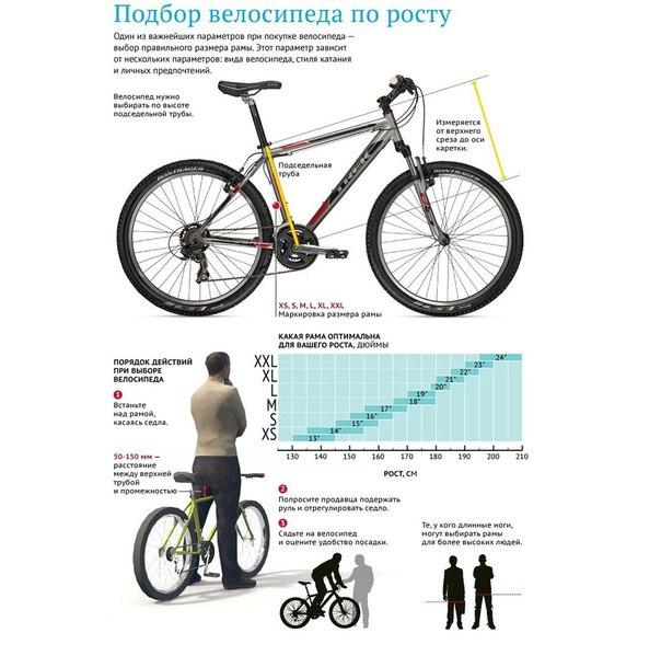 Как выбрать спортивный велосипед?