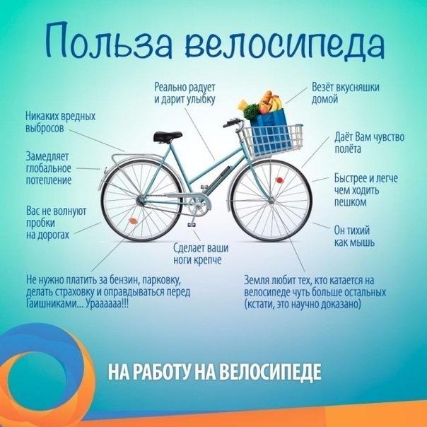 Вместе с прогулками в столице открылся сезон самокатов и велосипедов — российская газета
