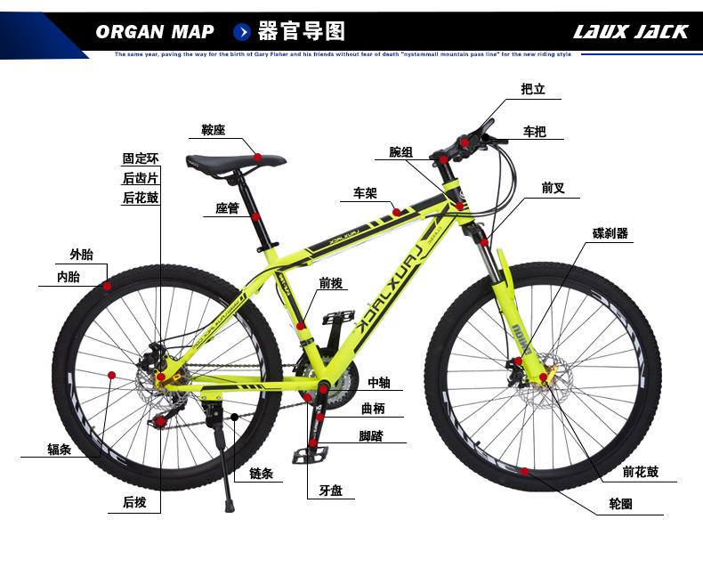 Как выбрать велосипед для мужчины: какой купить взрослому молодому человеку, описание разных моделей (горных, городских, шоссейных)