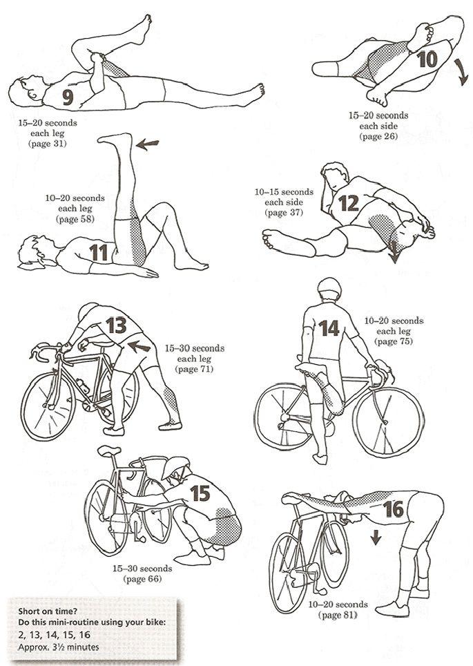 Лучшие силовые упражнения для велосипедистов
