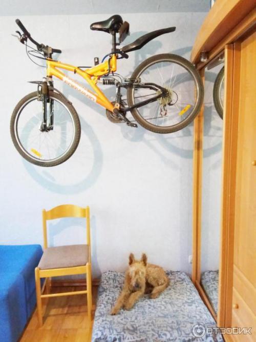 Как хранить велосипед: в квартире, на балконе, в гараже, на даче, кладовке и подвале