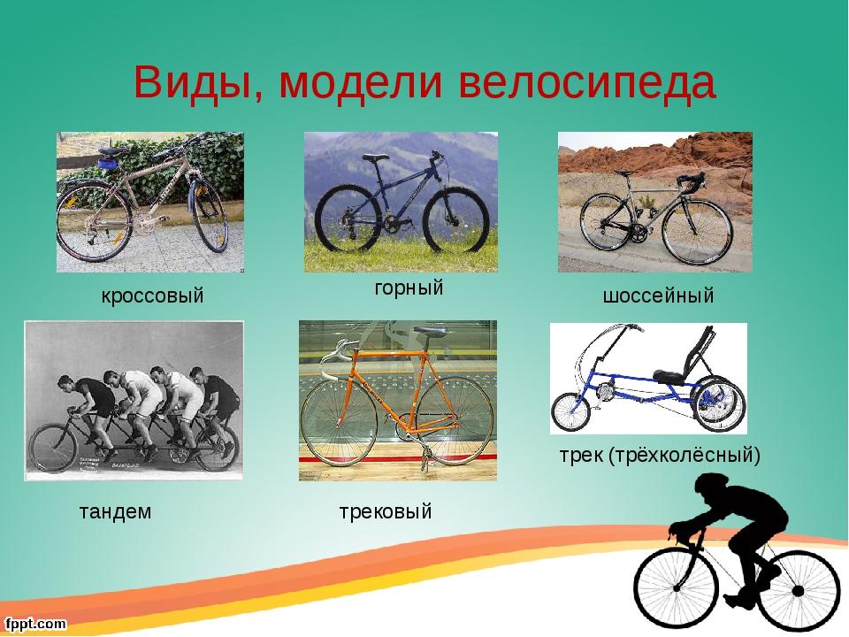Велоспорт  не только вид спорта — это стиль жизни