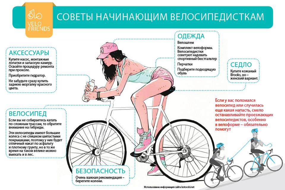 Питание велосипедиста - что полезно пить, катаясь на велосипеде