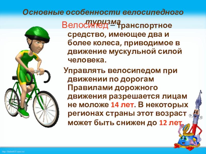 Спортивные велосипеды — многообразие и конструктивные отличия