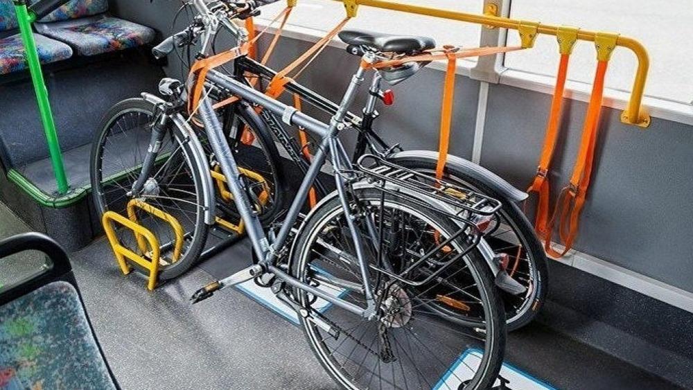 Перевозка багажа в автобусе: всё, что вы хотели знать