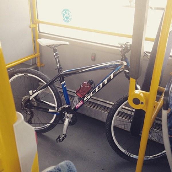 ✅ можно ли провозить велосипед в автобусе - veloexpert33.ru