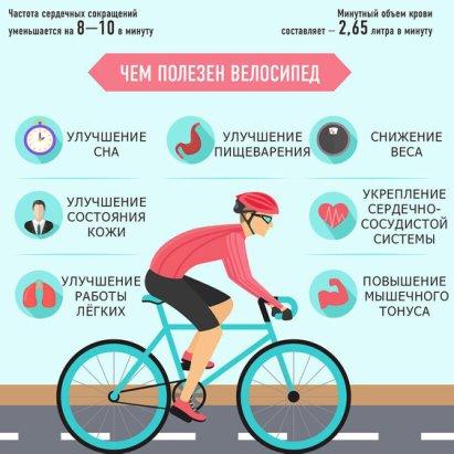 Что полезнее: бег или велосипед?