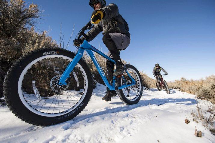 Фэтбайк отзывы владельцев, особенности и преимущества этих велосипедов, фирмы-производители, цены