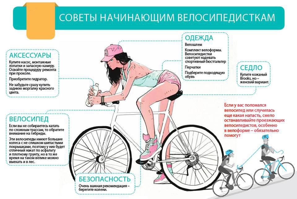 Калькулятор: сколько калорий сжигается при езде на велосипеде