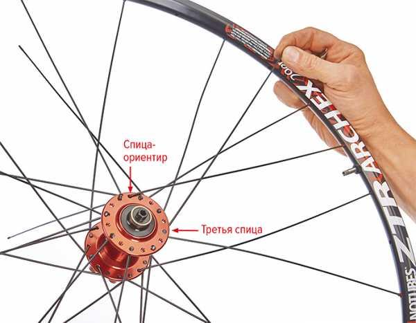 Что нужно знать о велосипедных спицах?